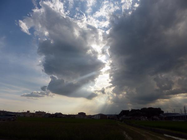【岡山通信】半径1キロの珍百景