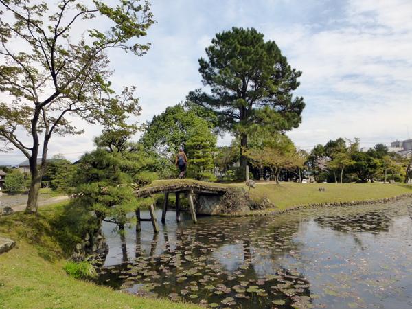 【岡山通信】岡山の桜(後篇)