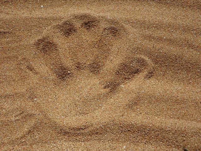 ウィリアム・ブレイクと啄木の砂